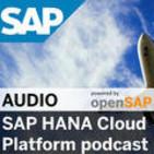 Product management SAP HANA Cl
