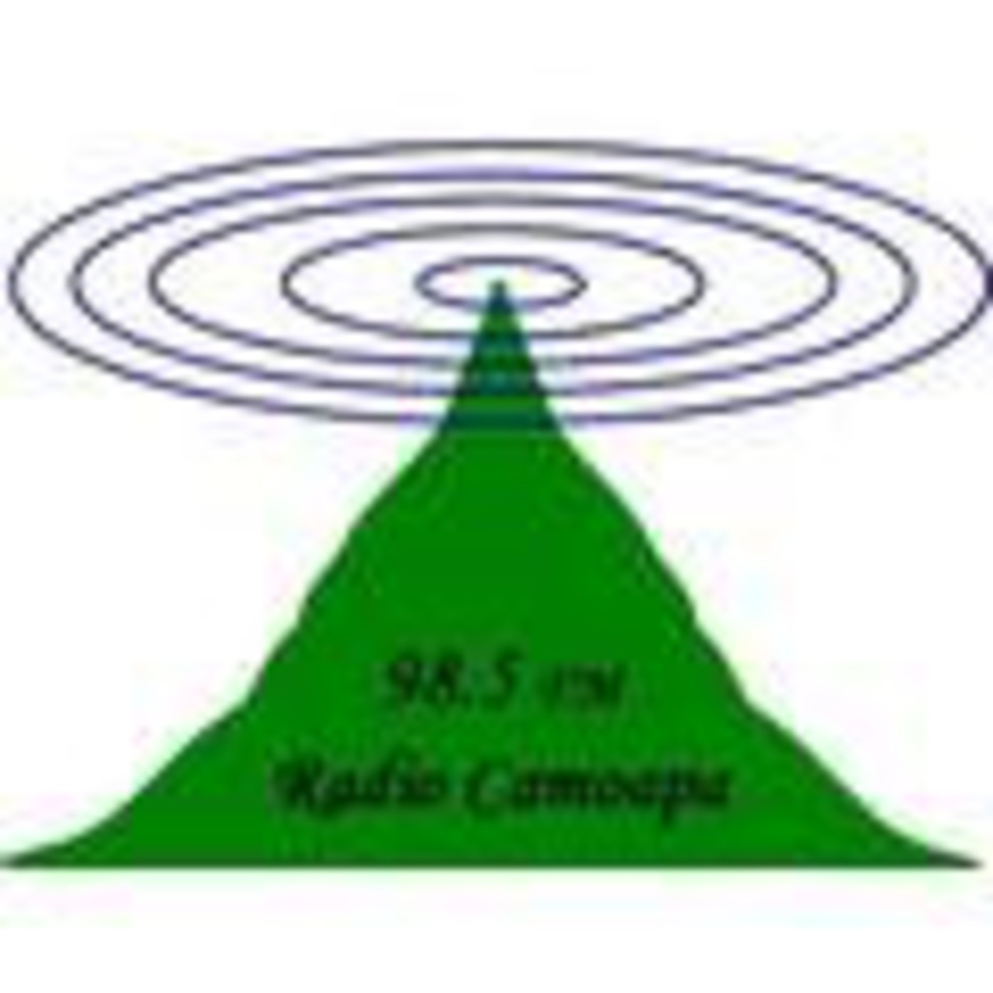radiocamoapa