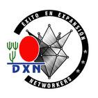 Éxito en Expansión Networkers