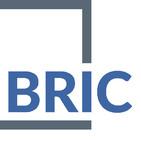 BRIC MEXICO